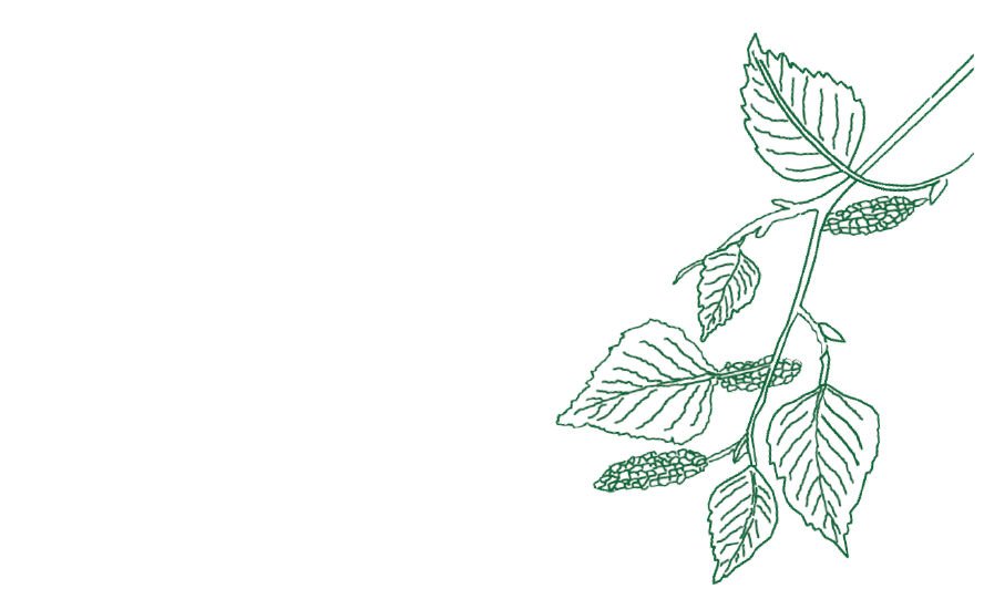 Linda Birch Naturopathy